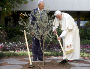 Pope Benedict plants an olive tree with Israel's President Shimon Peres